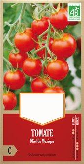 Semi di pomodoro miele del Messico