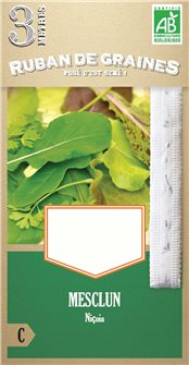 Striscia pre-seminata con verdure di Nizza
