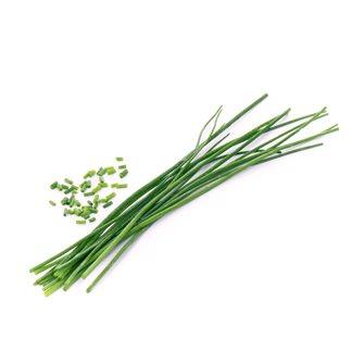 Erba cipollina ricarica Lingot per orto Véritable