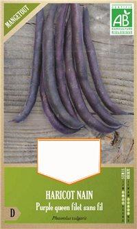 Semi di fagioli Purple Queen